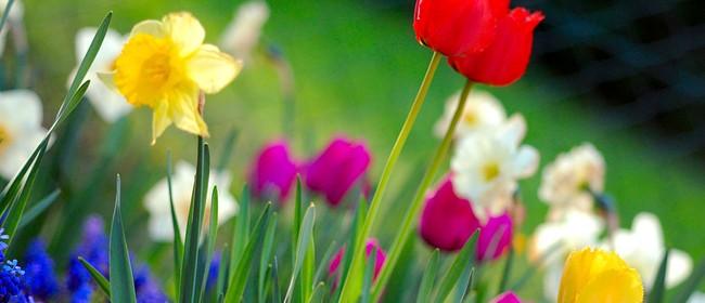 Spring Fling At Motueka - Garden Themed Market
