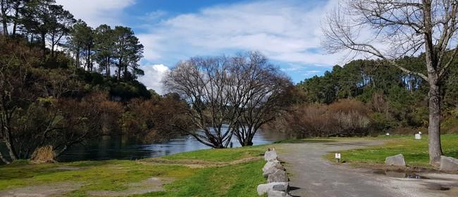 Greening Taupo Community Planting Day
