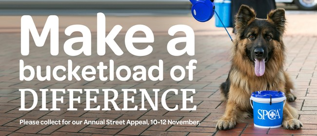 SPCA Auckland Annual Street Appeal