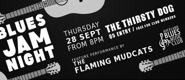 Blues Jam ft The Flaming Mudcats