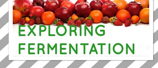 Exploring Fermentation
