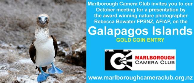 Galapagos Islands - Nature Photography Presentation