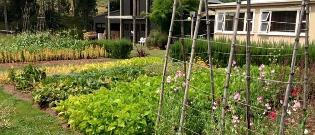 Household Gardener 1 Day Workshop