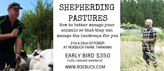 Shepherding Pastures Workshop
