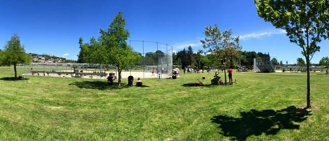 Softball - Have a Go Day Te Puke