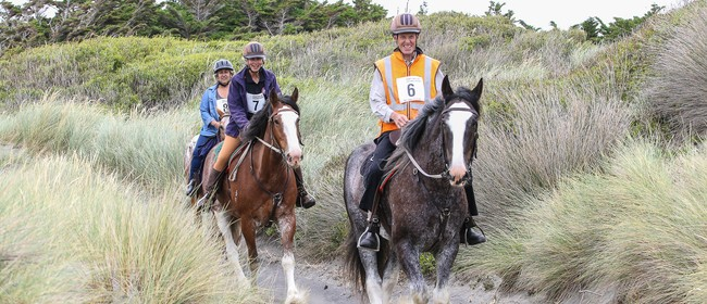 Rangitikei Area Distance Riders (RADRs) Teams Challenge/CTR