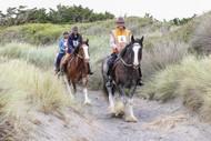 Rangitikei Area Distance Riders (RADRs) Teams Challenge/CTR