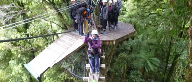 Eco-Adventures to Rotorua U3A