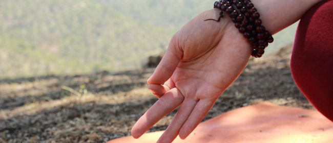 Beginner Hatha Yoga With Helen Kerrison