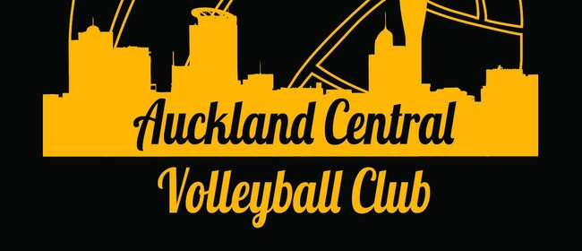 ACVC Summer Series: Mixed 4s Beach Volleyball