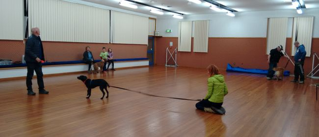 Life Skills and Puppy Training