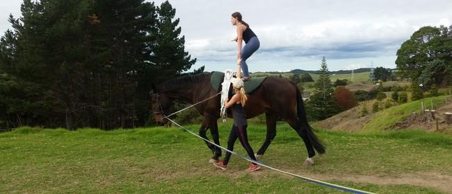 Equestrian Vaulting Beginner Session