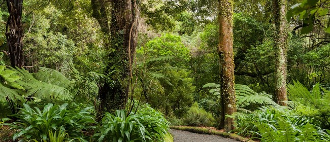 Guided Walk: The Big Evolutionary Stories of NZ Botany