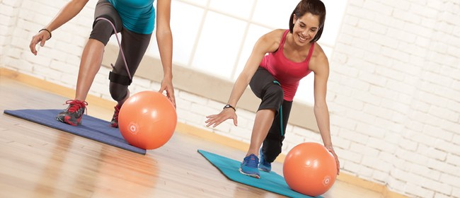 Stott Pilates Mini Stability Ball Workshop