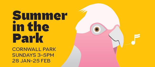 Summer In the Park - Jody Direen