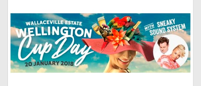 Wellington Cup Race Day 2018 Packages