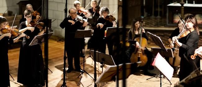NZ Barok with James Bush (cello) - The Splendour of Venice