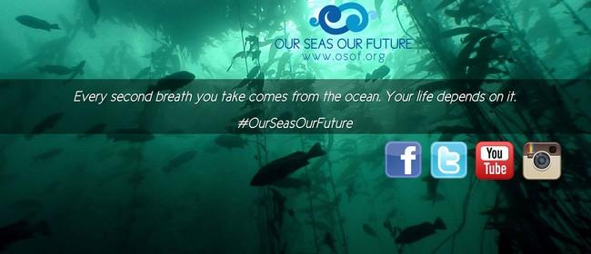 Seaweek - Dunedin Coastal Clean-Up