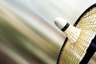 Autumn Badminton League