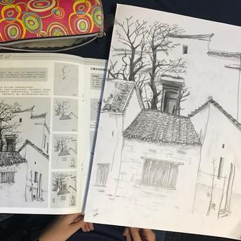 Drawing Birds In Clolour