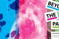 Animal Storytime with Bark NZ