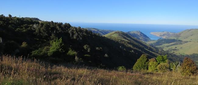 28 Mt Pearce Ridge Walk: CANCELLED