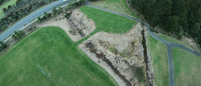 KNZBW Otangarei Clean Up and Planting
