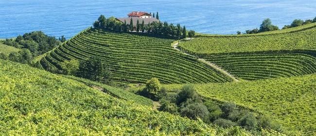 Wine Exploration - North West Spain
