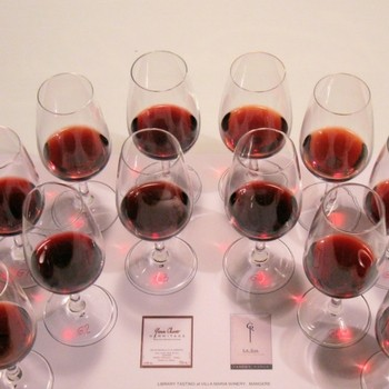 2009 & 2010 NZ Pinot Noirs: Trophy Wines