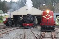 Steam Train Rides