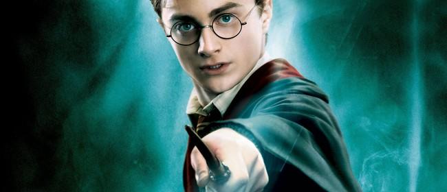 Harry Potter Quiz Night #6