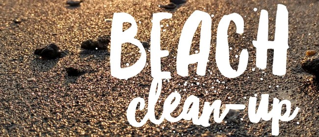 Kapiti Island Nature Tours Beach Clean Up