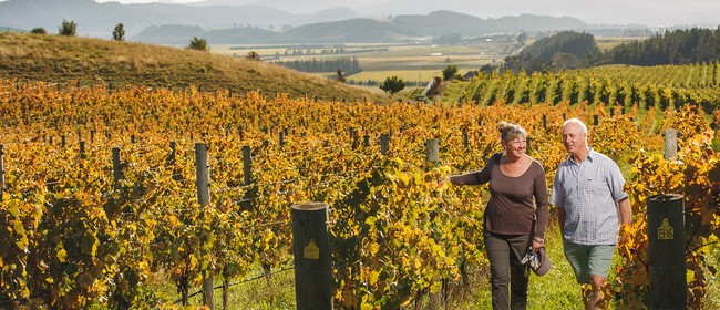 Winery of The Week: Churton Wines