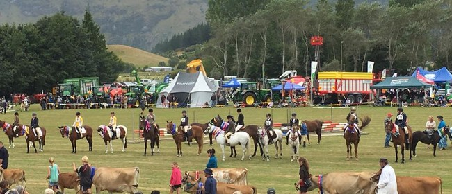 Golden Bay A&P Show