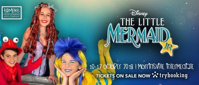 The Little Mermaid Jr Morrinsville Stuff Events