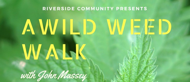 A Wild Weed Walk - Medicine For Free