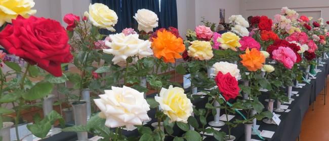 Manawatu Spring Rose Show