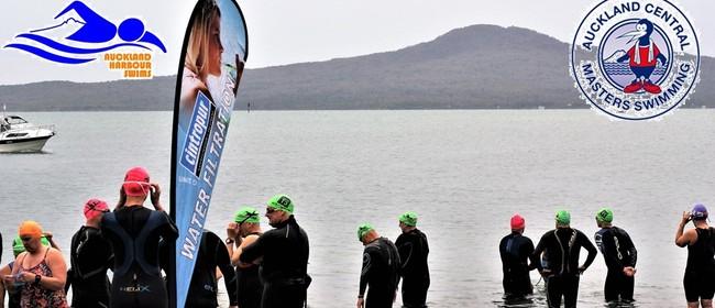ACM Rangitoto Harbour Swim