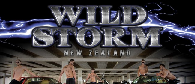 Wildstorm Male Revue