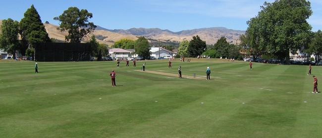 Hawke Cup Cricket - Marlborough v Buller