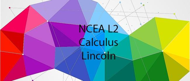 NCEA L2 Calculus