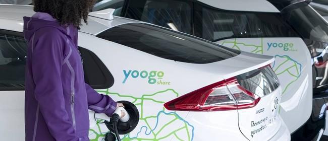 Yoogo Share Driver Training