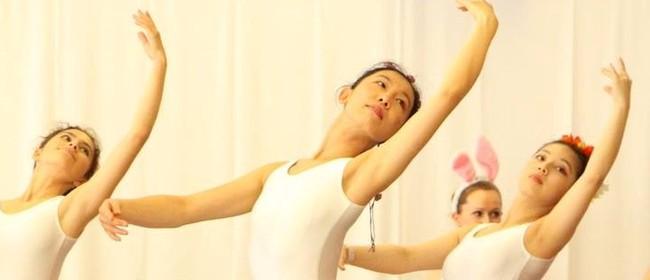 Complete Beginner Ballet Workshop