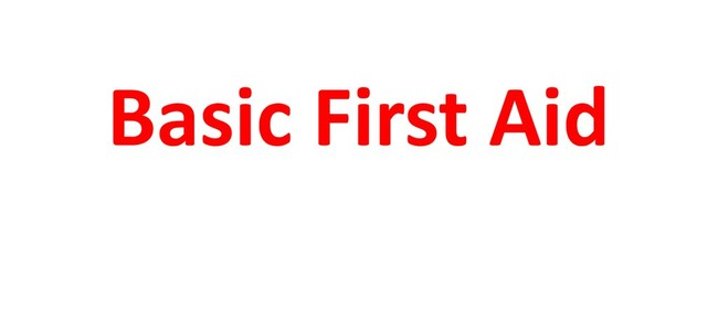 Basic First Aid for Adults Workshop