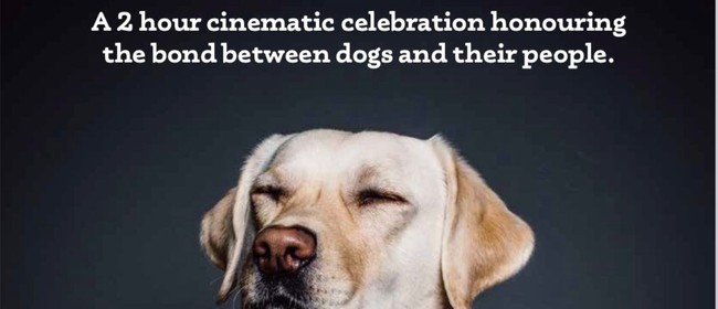 Top Dog Film Festival NZ Encore