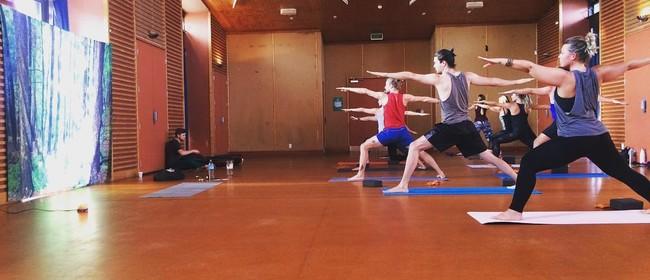 Yoga Hatha/Vinyasa