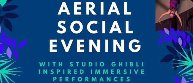 Aerial Social Evening