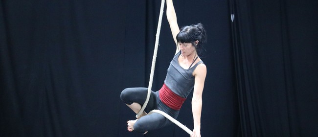 Adult Aerial Classes (Silks, Trapeze, Rope)