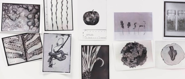 Science In the Darkroom Photography Exhibition