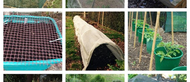 Portable Shade and Shelter for Easier Edible Growing